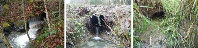 Fish culvert examples in storymap